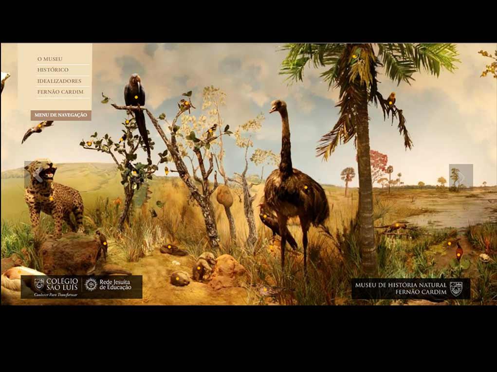 waba-portfolio-educacao-ColegioSaoLuiz-Museu01
